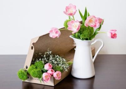 bloomthis_tulips.jpg